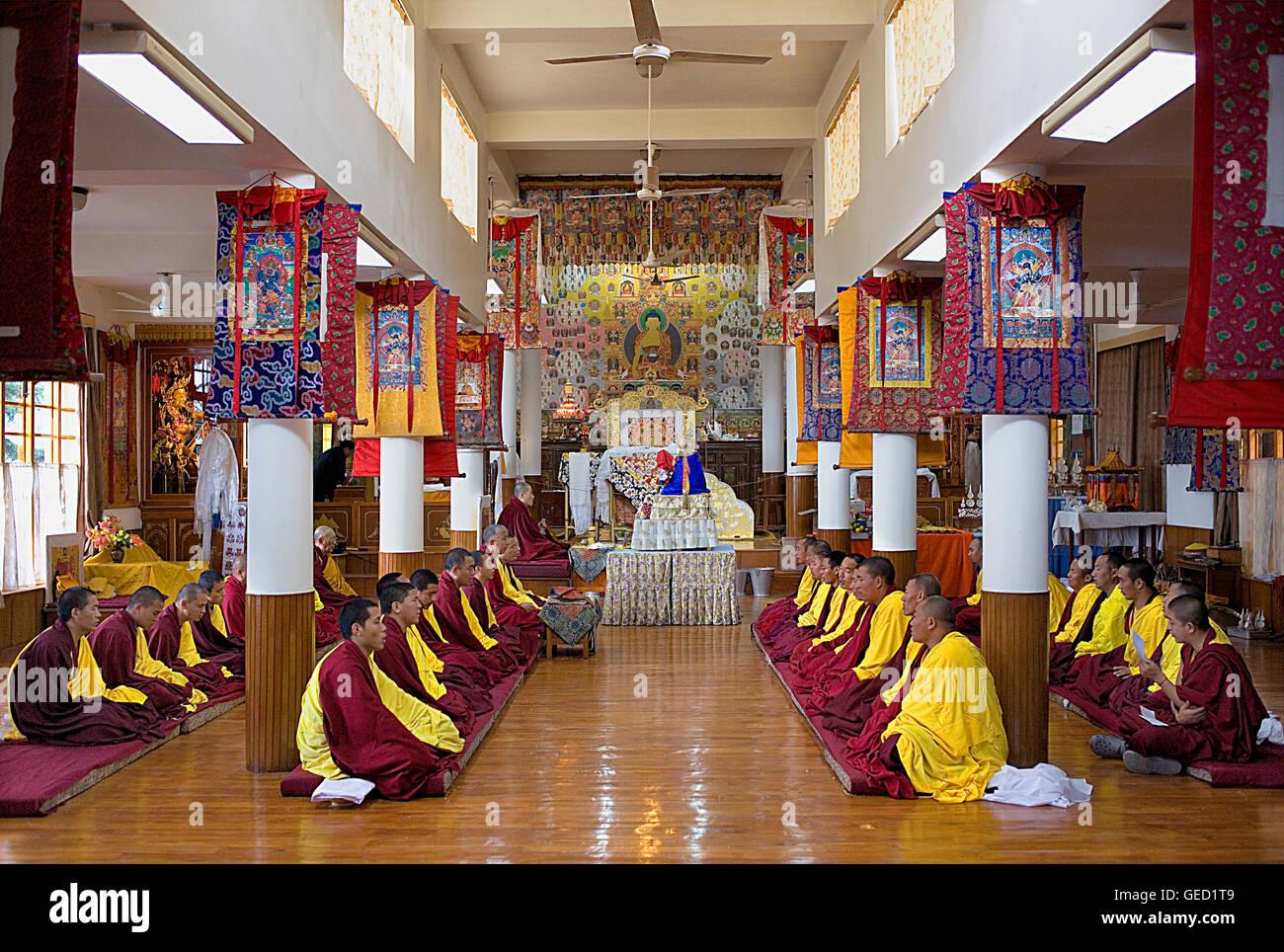 Puja,i monaci la preghiera, il Monastero Namgyal,nel complesso Tsuglagkhang. McLeod Ganj Dharamsala, Himachal Pradesh, Immagini Stock