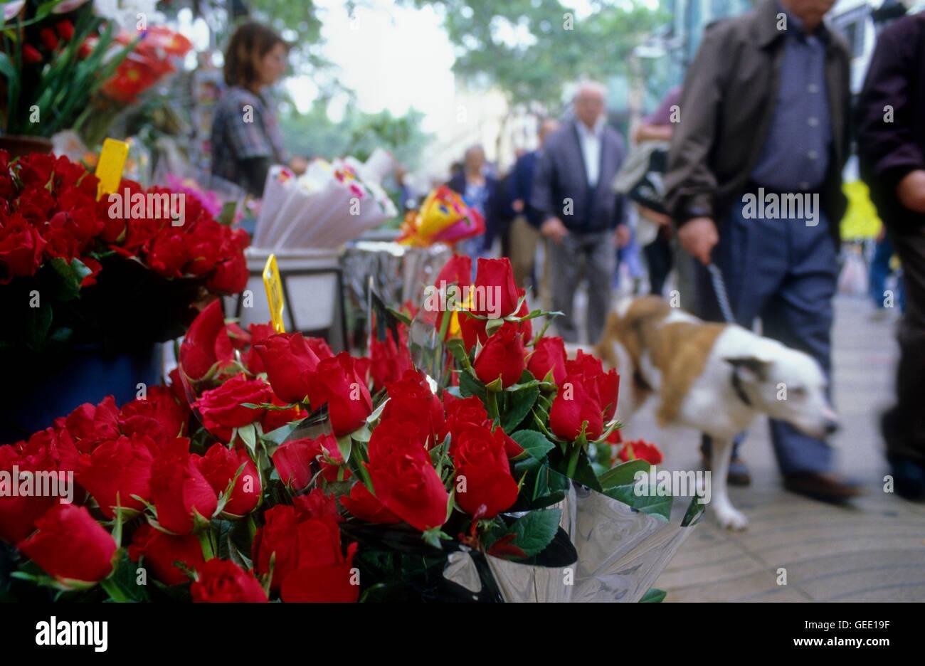 Barcellona: Las Ramblas. Negozio di fiori Immagini Stock