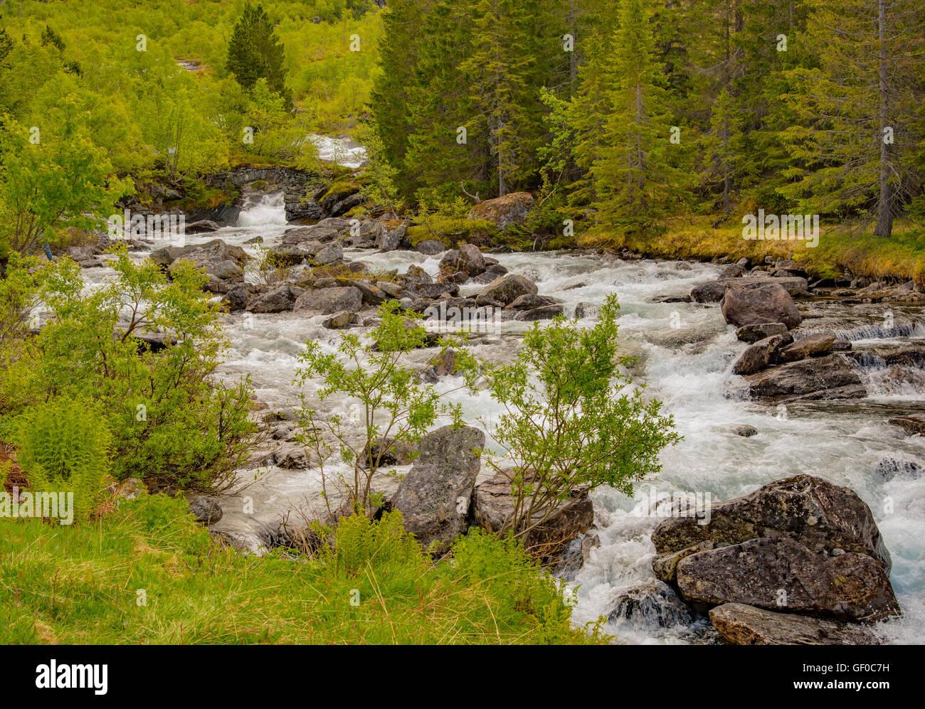 Trollistigen, fiumi, Reinheimen Parco Nazionale. Norvegia, Scandanavia, europeo Immagini Stock