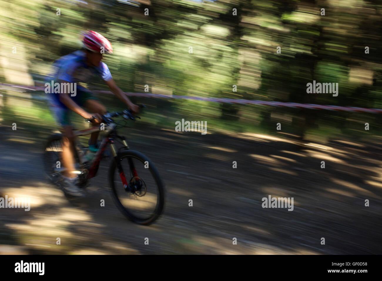 MTB biker accelerando al Bike & Fun Cup 2016, con telecamera di panning al di fuori della messa a fuoco lo sfondo. Immagini Stock