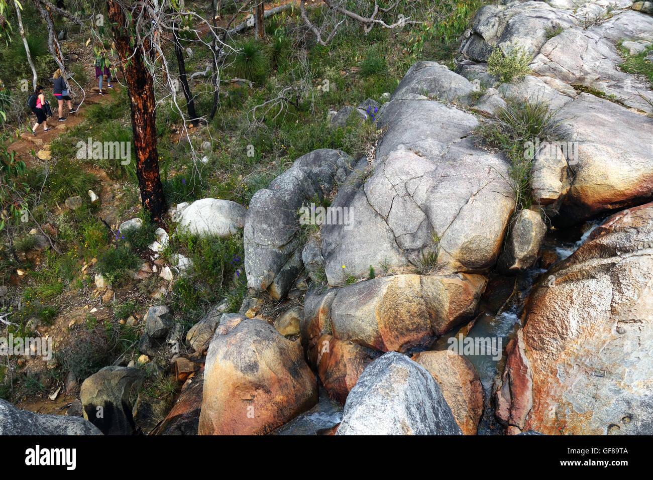 Bushwalkers passando vicino torrente su Rocky circuito piscina, Kalamunda Darling scarpata, sulle colline di Perth, Foto Stock