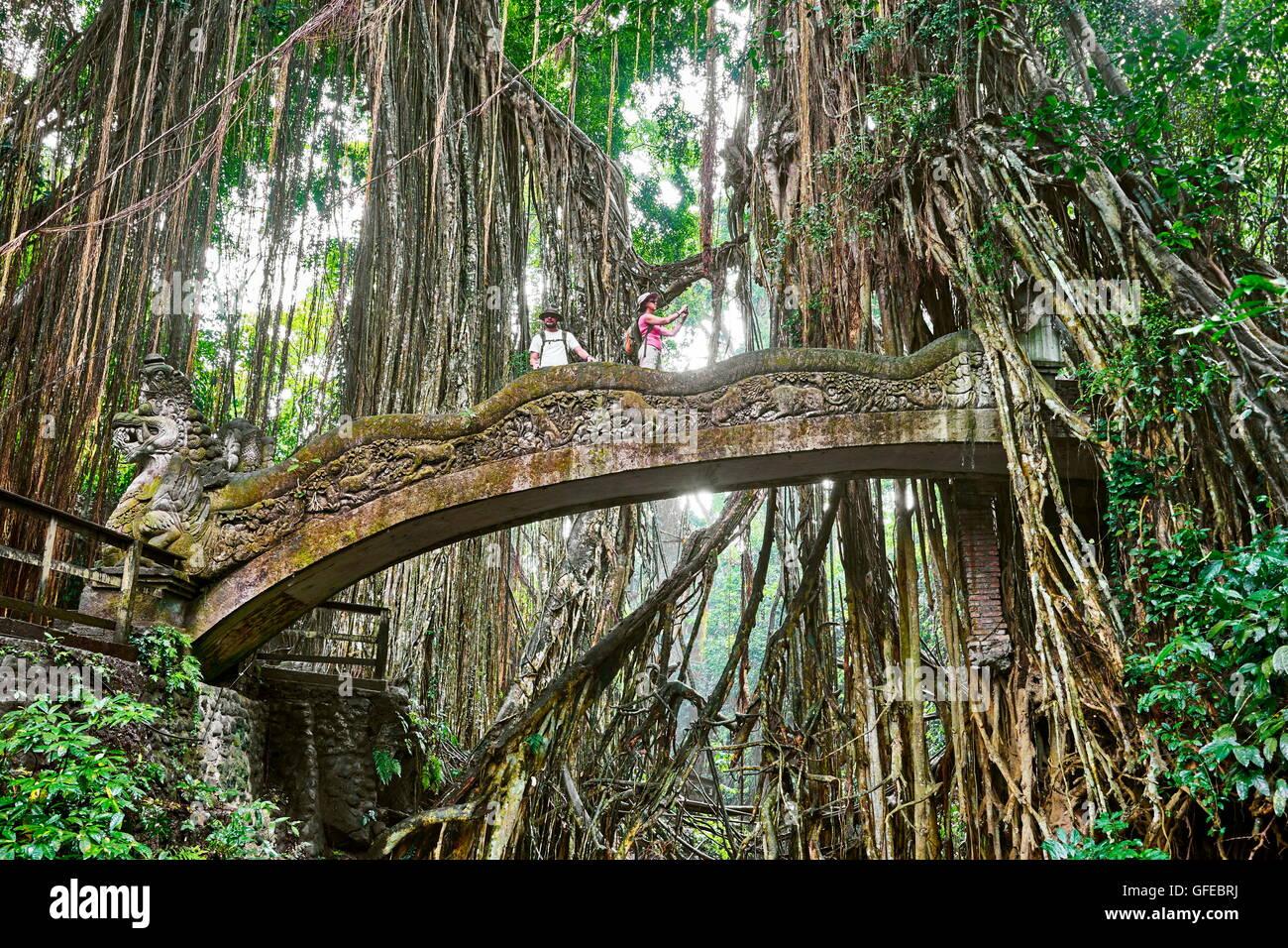 Dragon Bridge nel sacro santuario di scimmia, Bali, Indonesia Immagini Stock