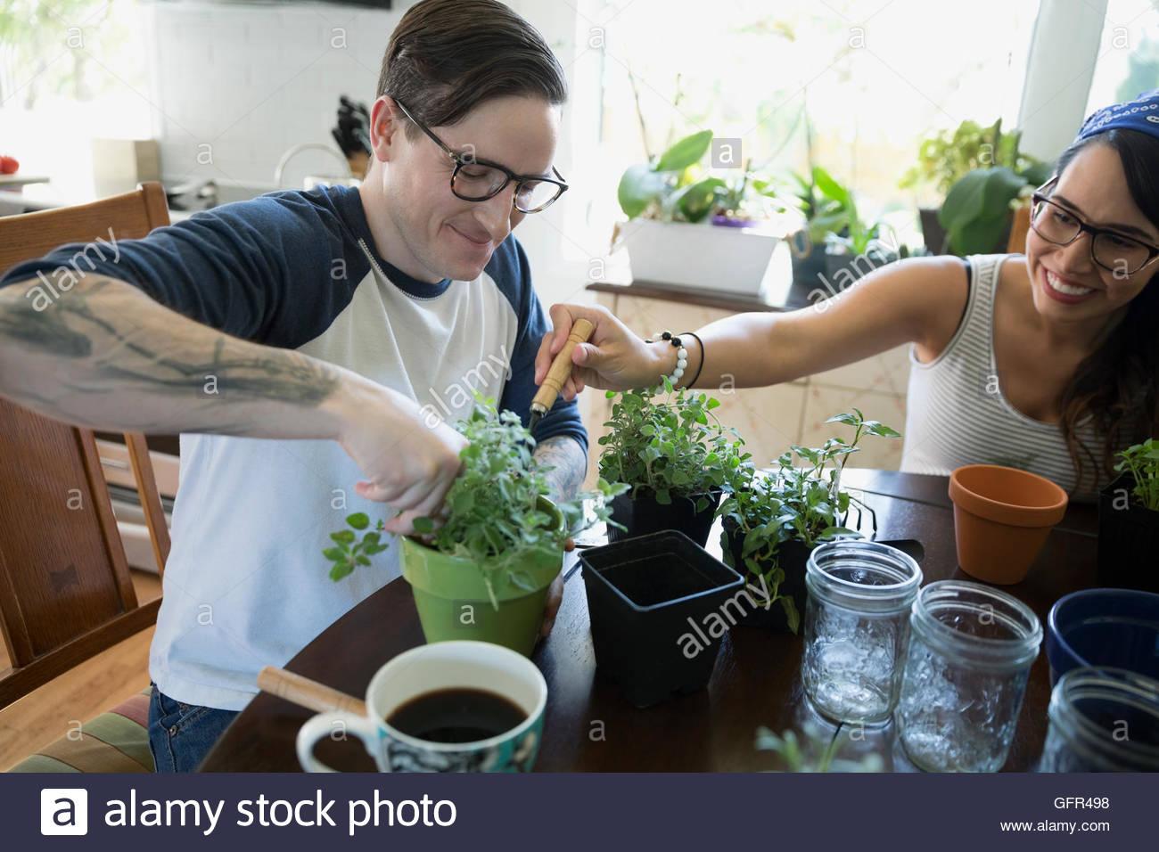Piante Da Cucina Immagini & Piante Da Cucina Fotos Stock - Alamy