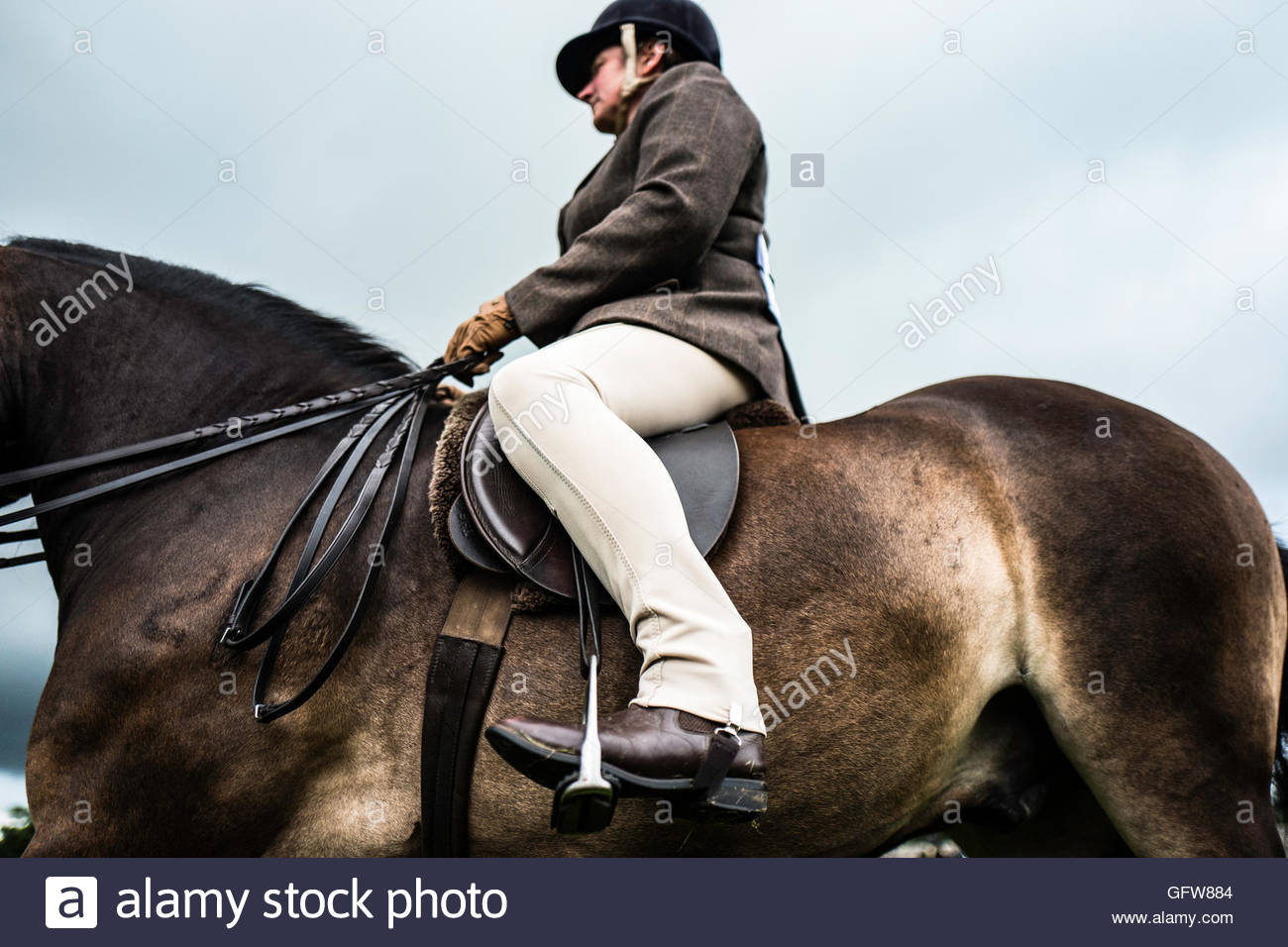 Cavaliere a cavallo in abito formale e stivaletti in sella a una baia. Immagini Stock
