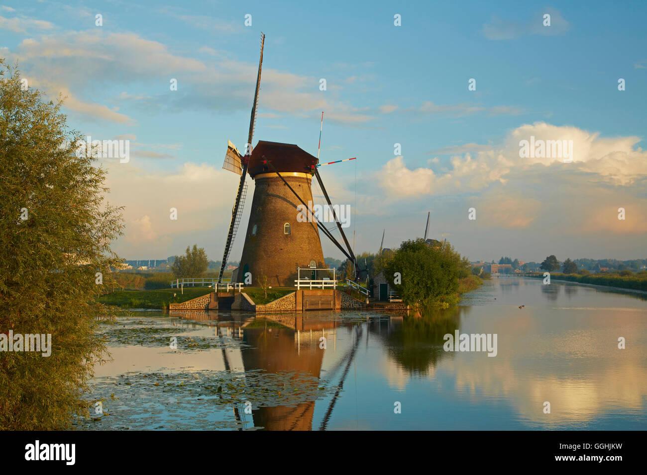Primo sole del mattino presso i vecchi mulini a vento a Kinderdijk, Provincia di Paesi Bassi meridionali, South Immagini Stock