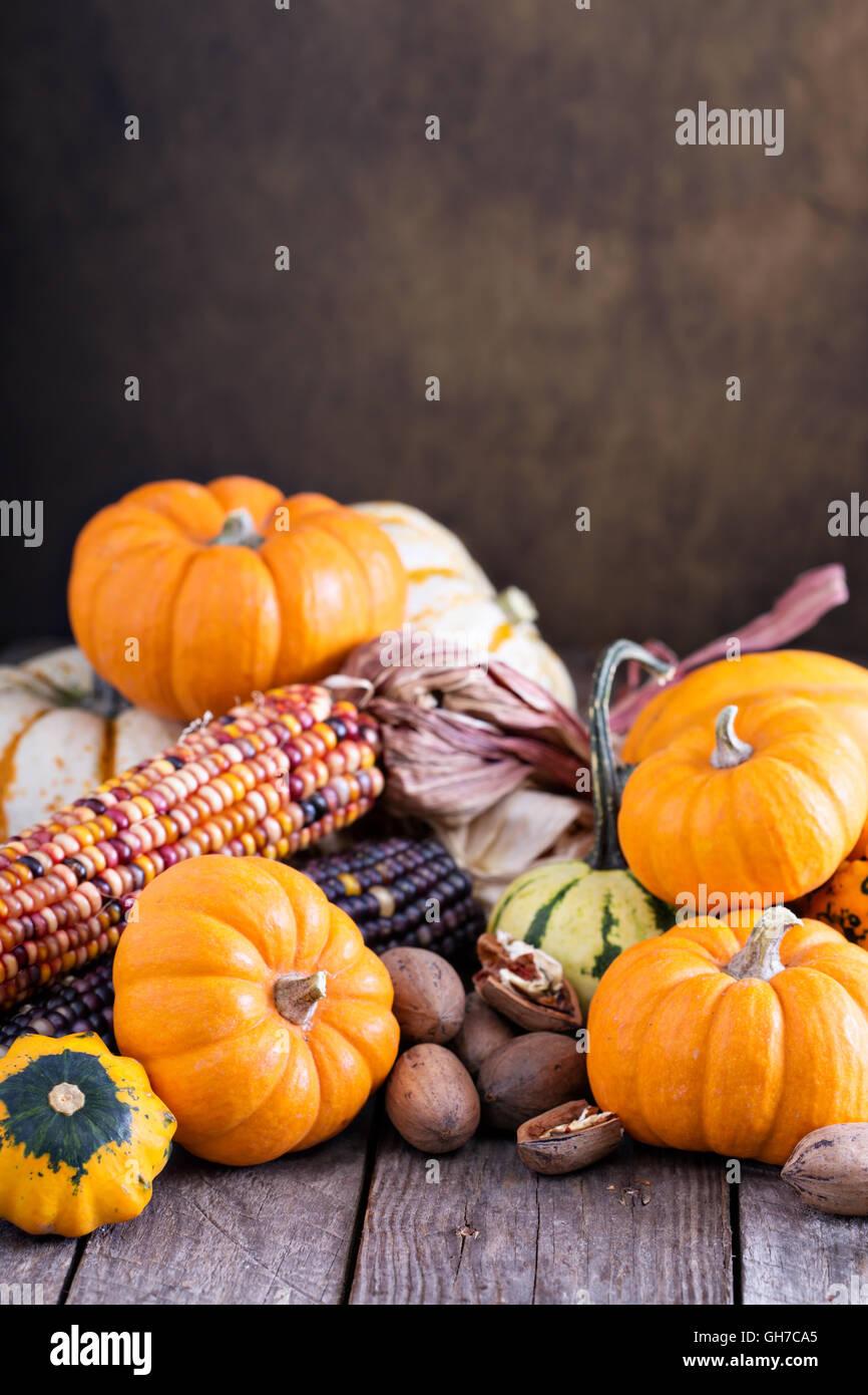 Varietà di coloratissimi zucche decorative su un tavolo Immagini Stock