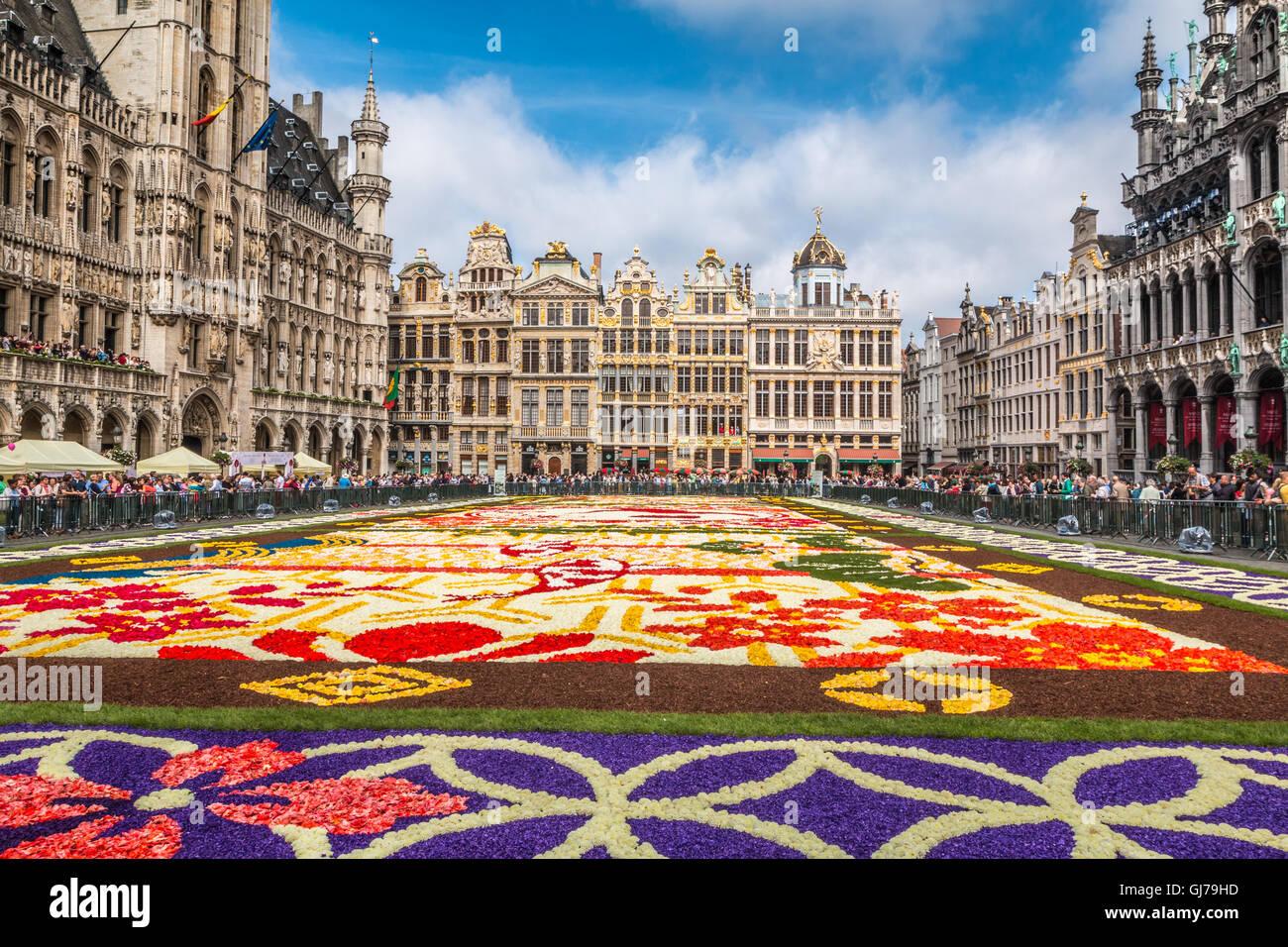 Tappeto Floreale Bruxelles : Bruxelles che meraviglia il tappeto di fiori guarda la gallery