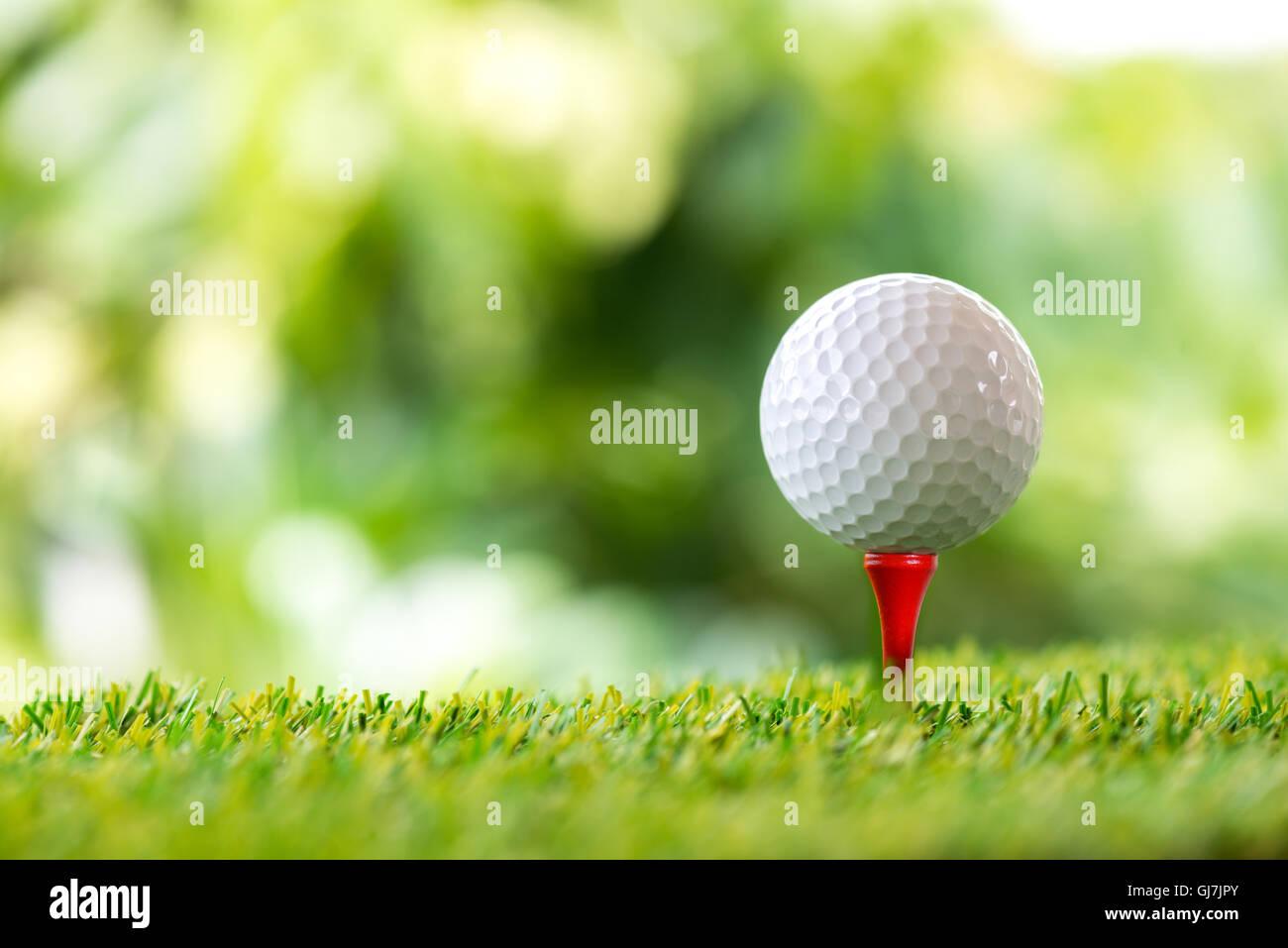 Palla da golf sul raccordo a T nel campo da golf Immagini Stock