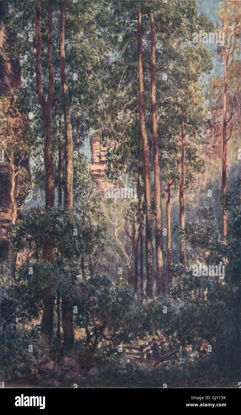 """""""Una bussola Valley """" da Percy Spence. Australia, antica stampa 1910 Immagini Stock"""