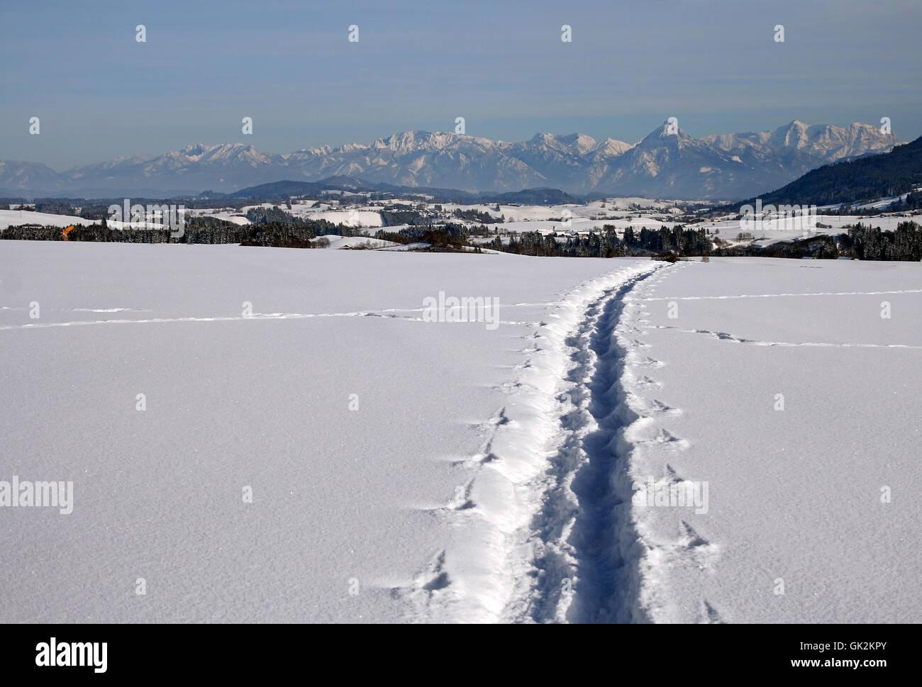 Montagne di rilevamento di inverno Immagini Stock