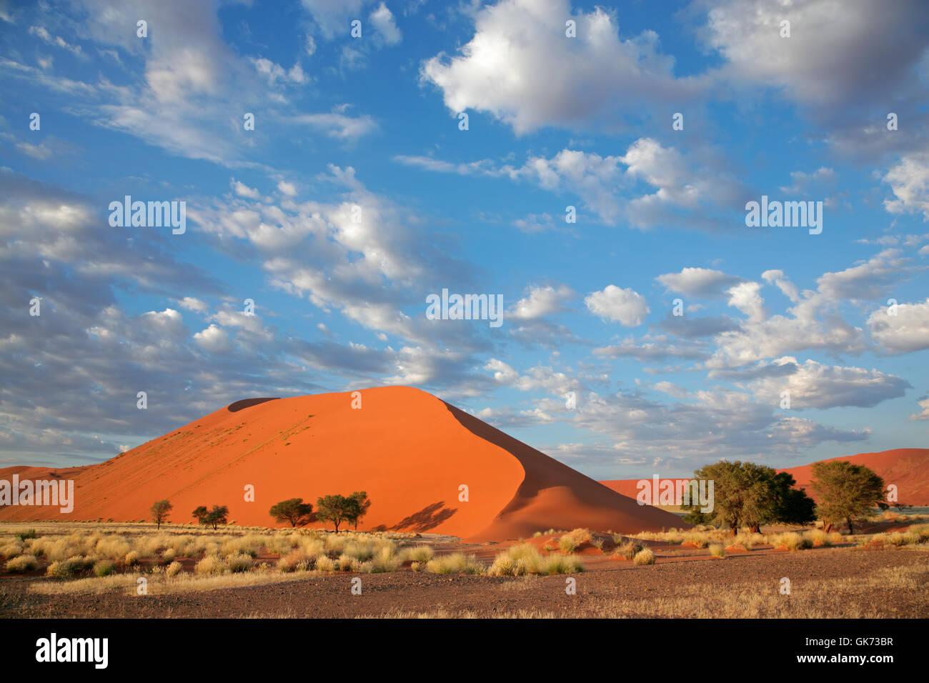 Vasto Deserto della Namibia Foto Stock