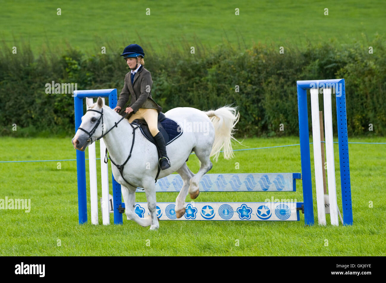 Ragazza adolescente show jumping sul suo pony a Llanigon YFC Show 2016 nr Hay-on-Wye Powys Wales UK Immagini Stock