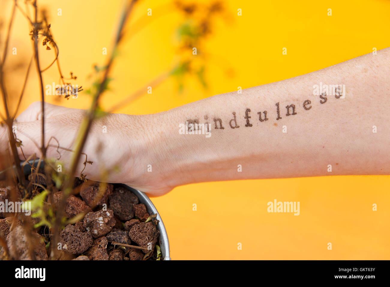 Natura e mindfulness II Immagini Stock