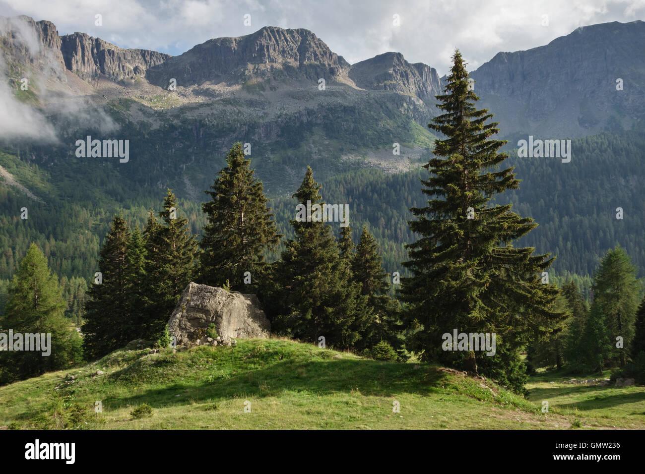 Le Dolomiti, Trentino, Italia settentrionale. Il Passo San Pellegrino in estate Immagini Stock