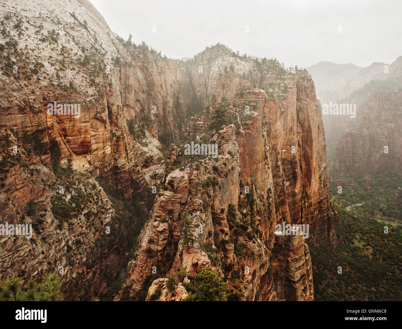 Una vista in Utah's Zion National Park Immagini Stock
