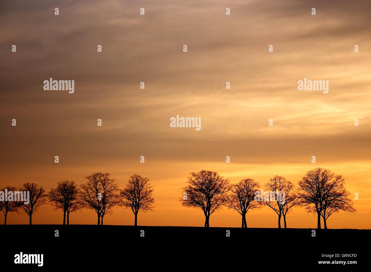 Vicolo nel tramonto Immagini Stock