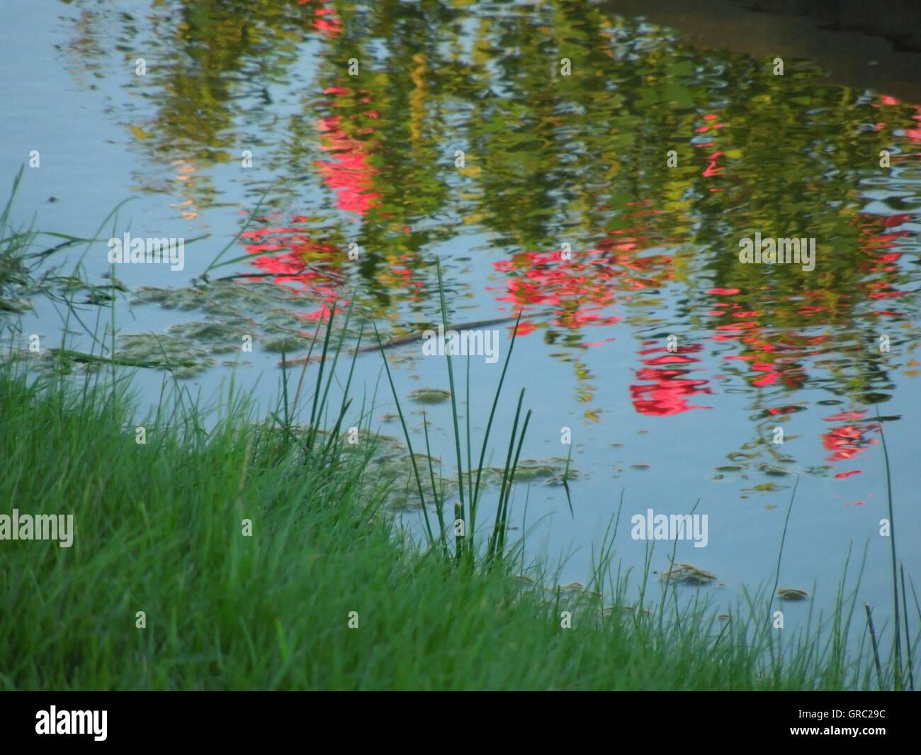 Impressionismo e fotografia Immagini Stock
