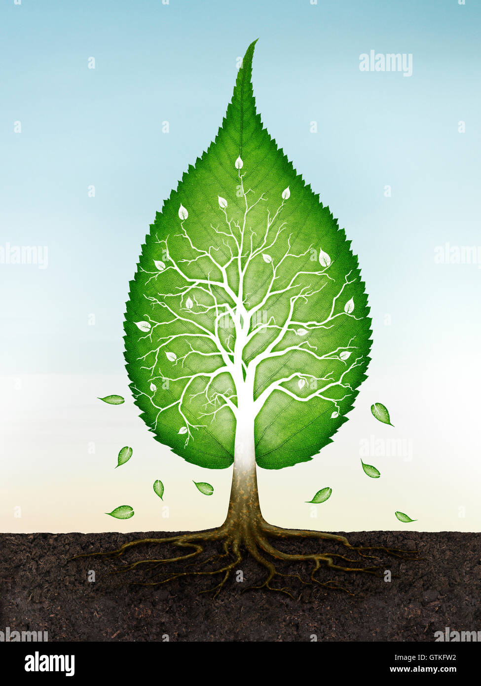 Verde a forma di foglie di albero con radici nella terra spirituale concetto zen sul cielo blu sullo sfondo. Foto Immagini Stock