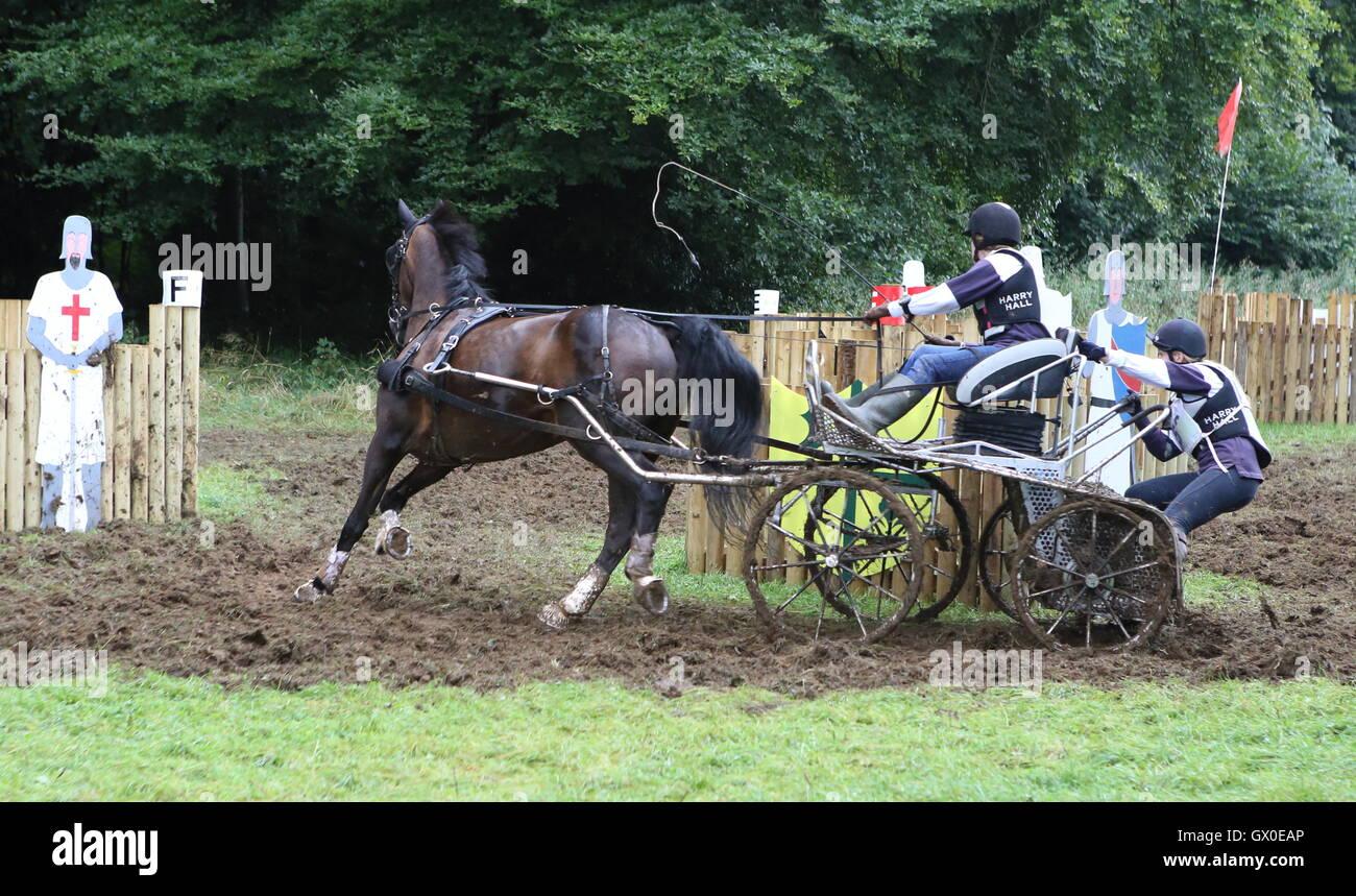 Cavallo singolo carrello competere nella maratona Immagini Stock
