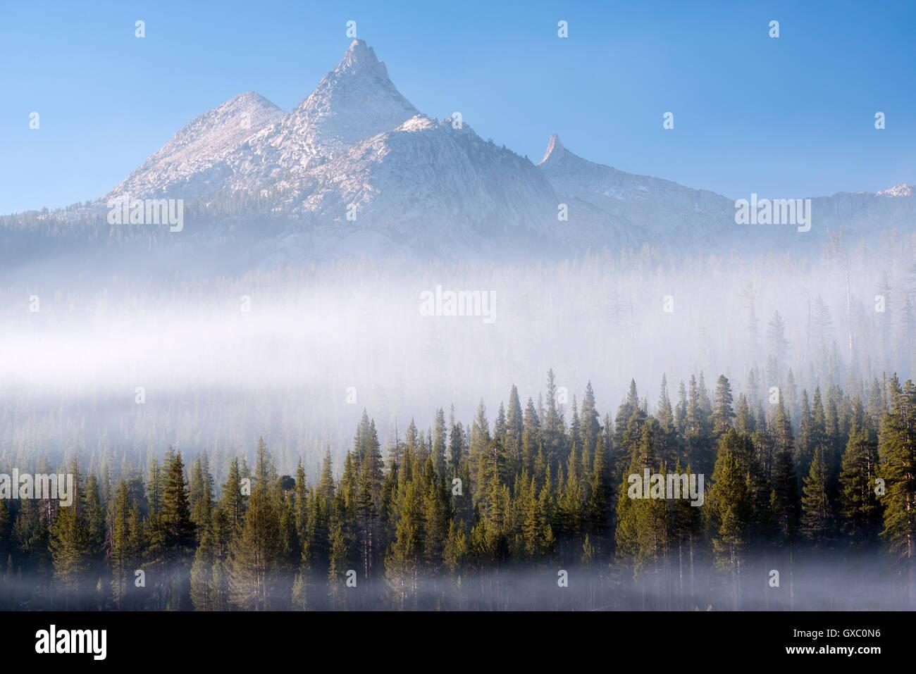 La nebbia che circonda la foresta al di sotto del picco di Unicorn, Yosemite National Park, California, Stati Uniti Immagini Stock