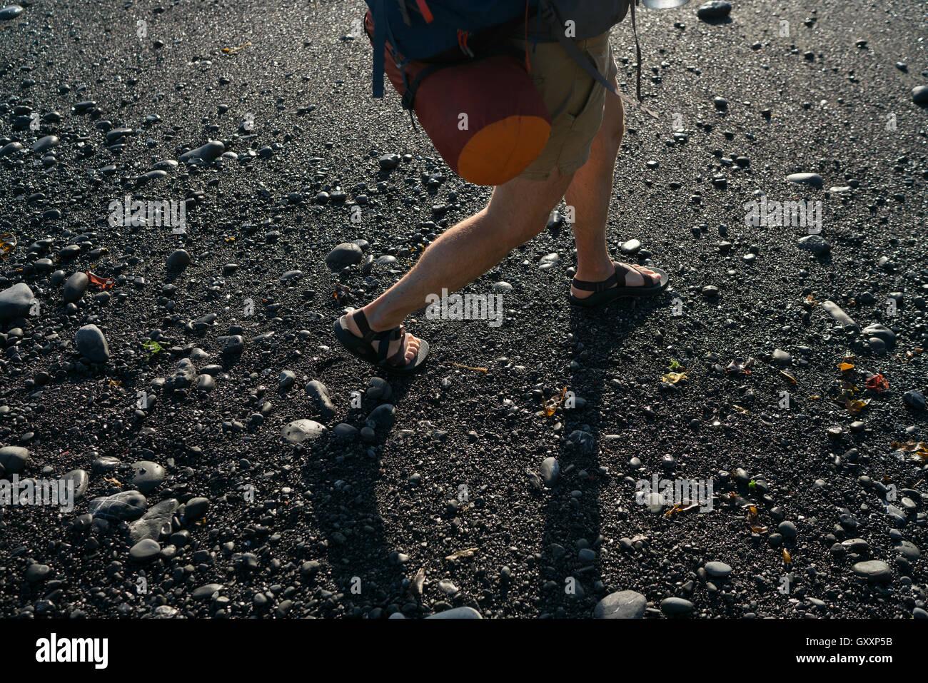 Backpacking attraverso sabbie nere della California del nord della Costa persa Immagini Stock