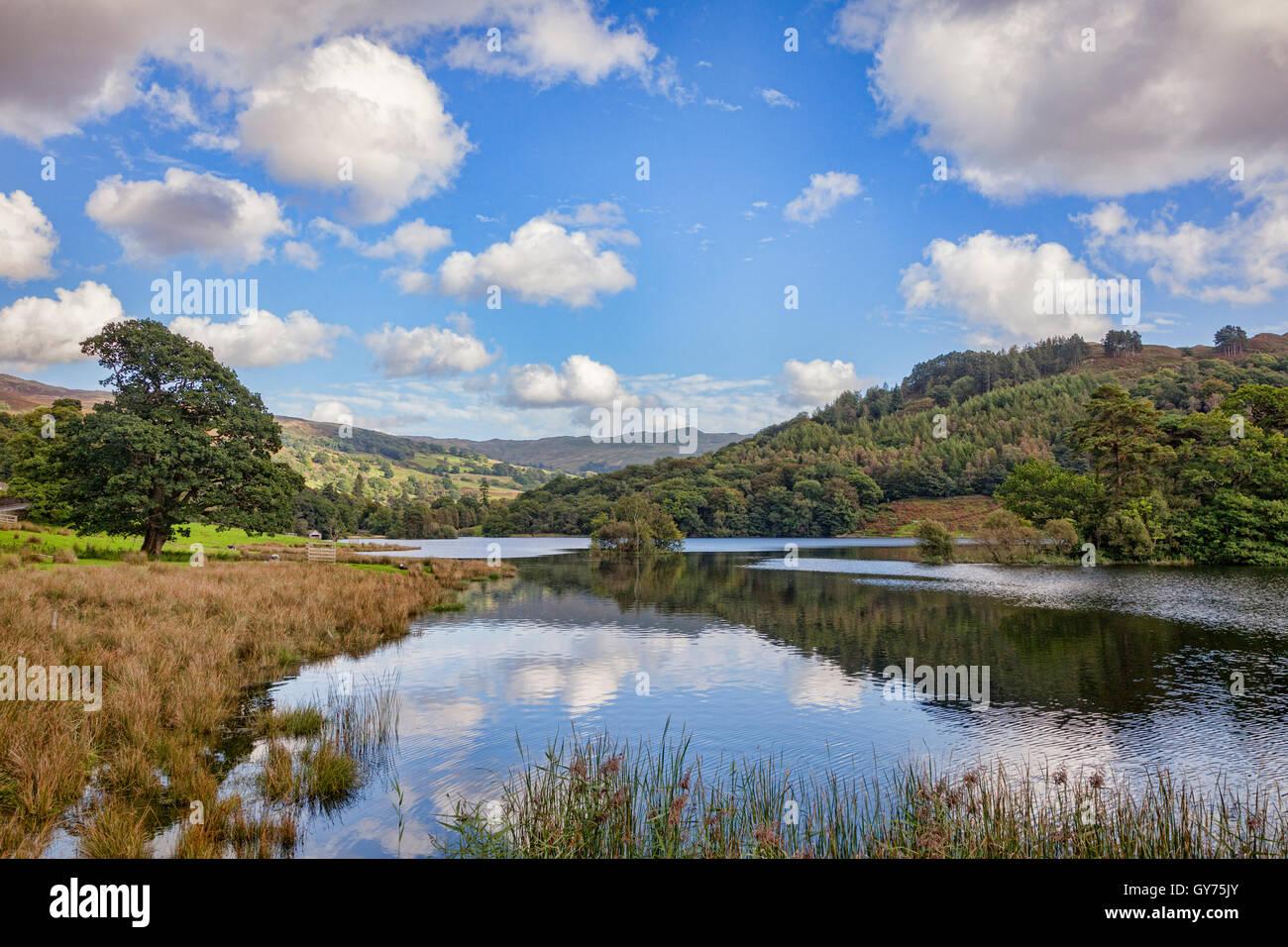 Rydal acqua, Parco Nazionale del Distretto dei Laghi, Cumbria, England, Regno Unito Immagini Stock