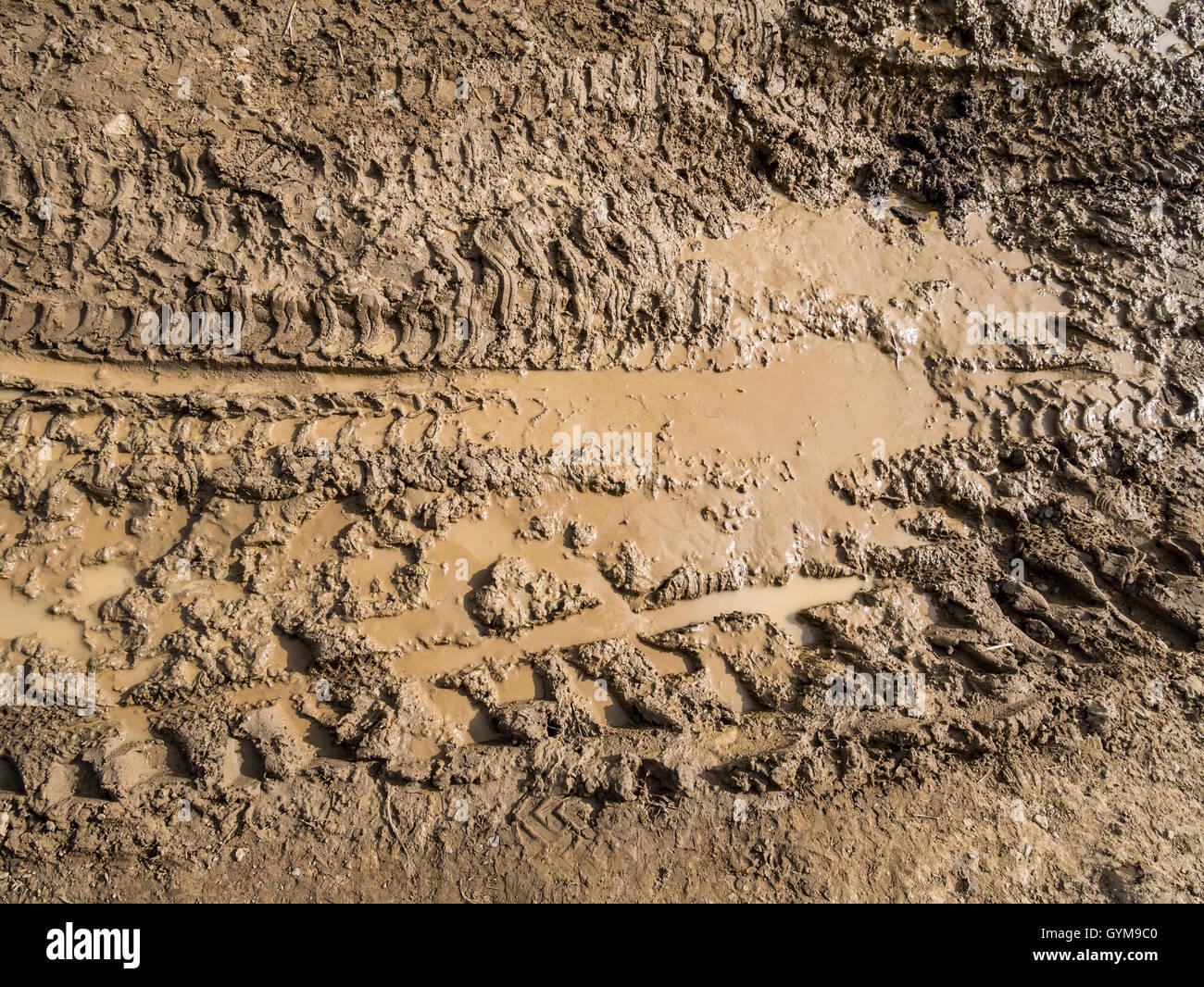 Terreni fangosi tracce di pneumatici in Vicolo del paese di close-up Immagini Stock