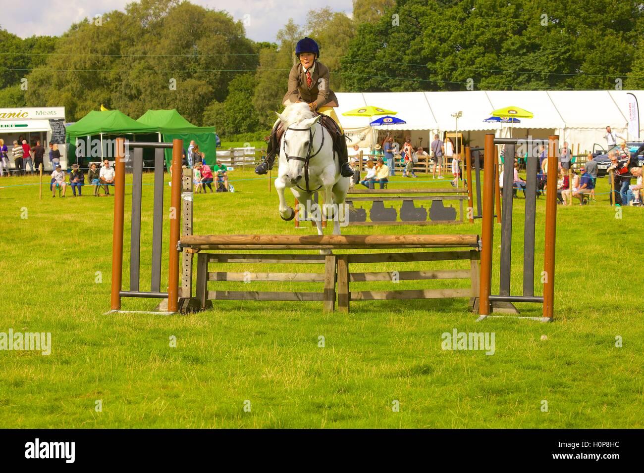 Ragazza in sella ad un cavallo show jumping un recinto. Bellingham Show e Country Festival, Bellingham, Northumberland, Immagini Stock