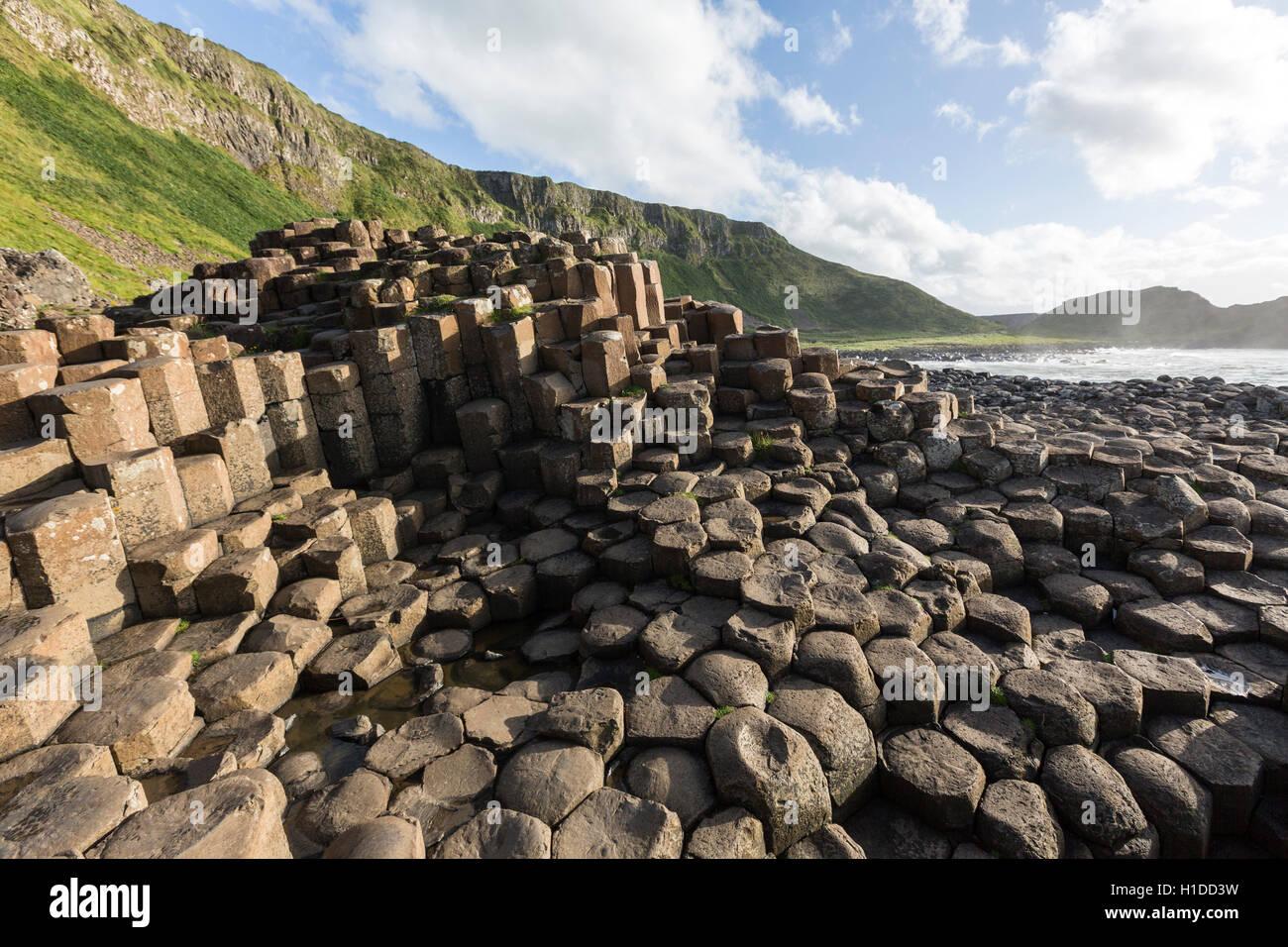 Ganny porta a Giant's Causeway, Bushmills, County Antrim, Irlanda del Nord, Regno Unito Foto Stock