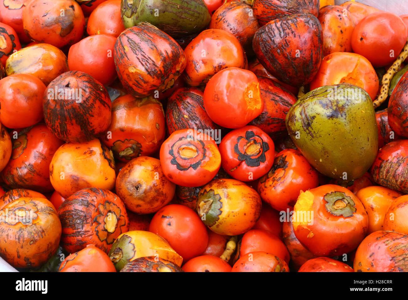 Kaki sono in vendita in un locale il mercato in India Immagini Stock