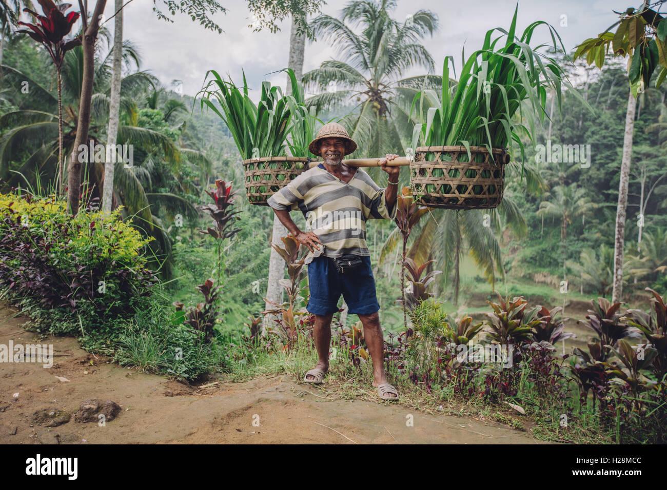 A piena lunghezza shot di fiduciosa vecchio uomo che trasportano le piantine sulle sue spalle. Maschio anziano contadino Immagini Stock
