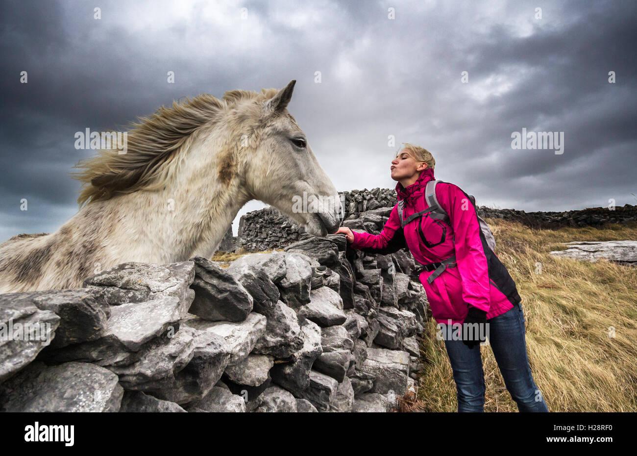Ragazza adolescente, cavallo, warmblood bavarese, in piedi, baciare, vista laterale Immagini Stock
