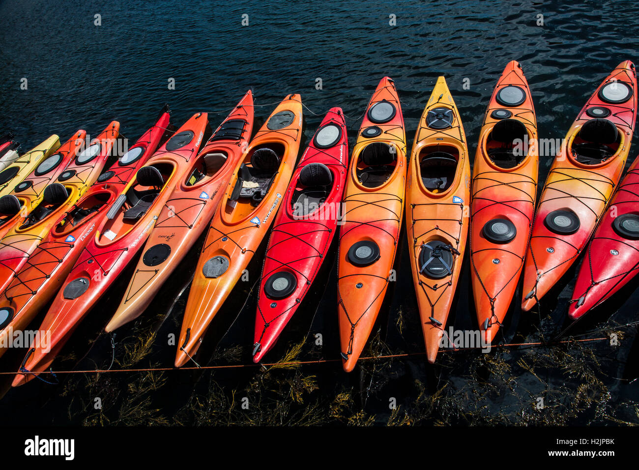Close up colorato modello astratto di una fila di kayak, Rockport, Massachusetts, USA, New England, America, file Immagini Stock