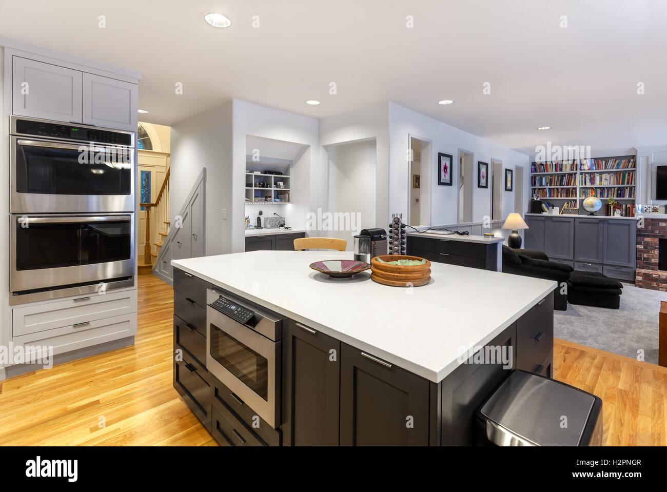 Cucina aperta e family room Immagini Stock
