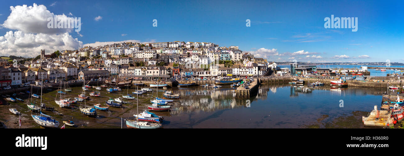 GB - DEVON: Brixham Harbour con Torbay mostra in background Immagini Stock