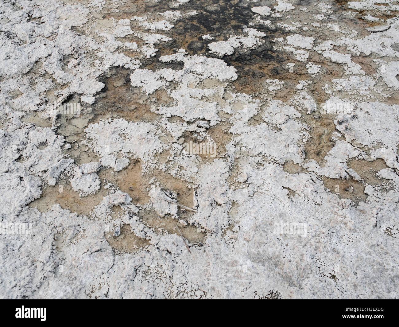 Bacino Badwater - Parco Nazionale della Valle della Morte Immagini Stock