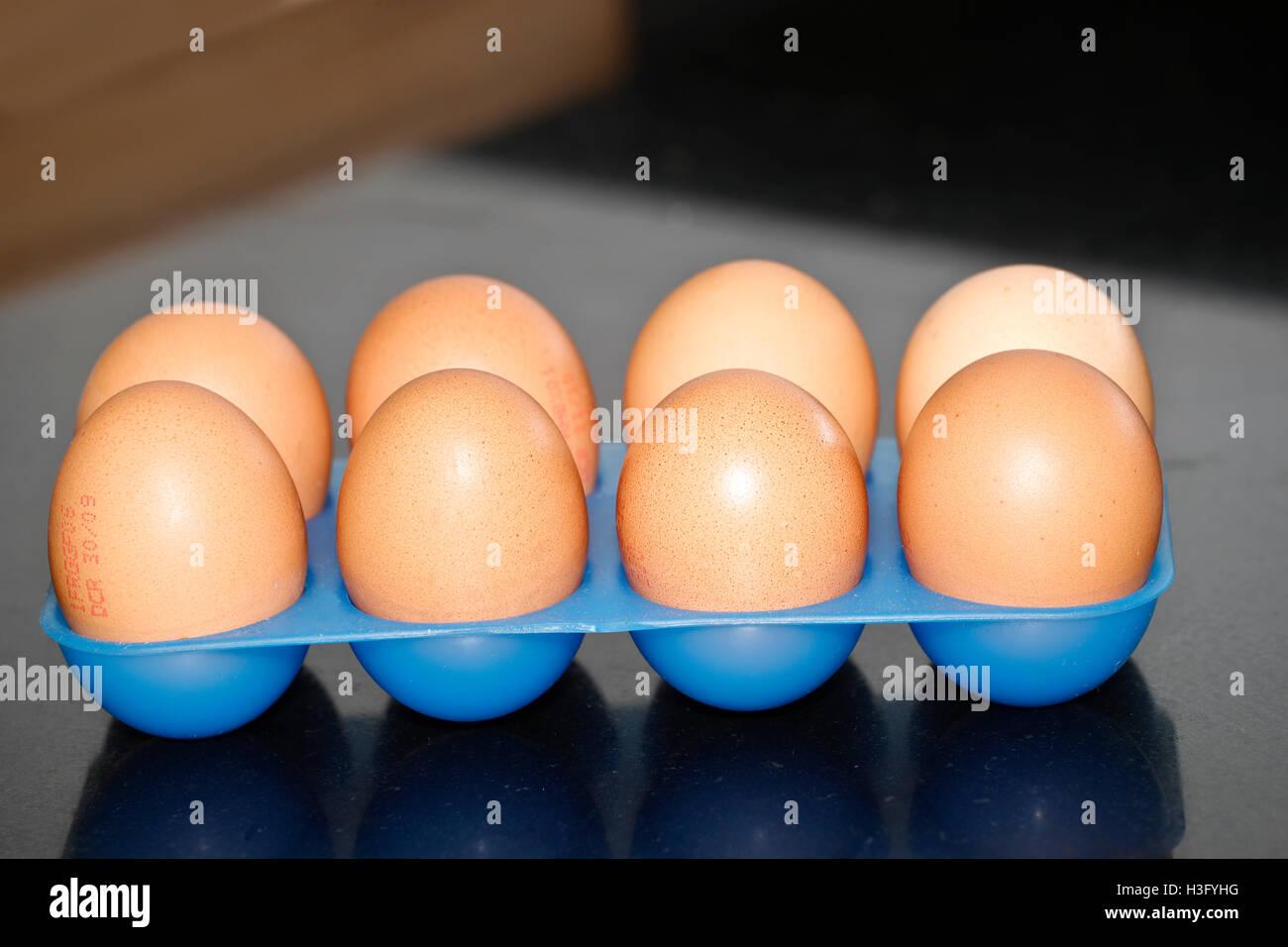 8 uova in una plastica blu contenitore porta uovo Immagini Stock