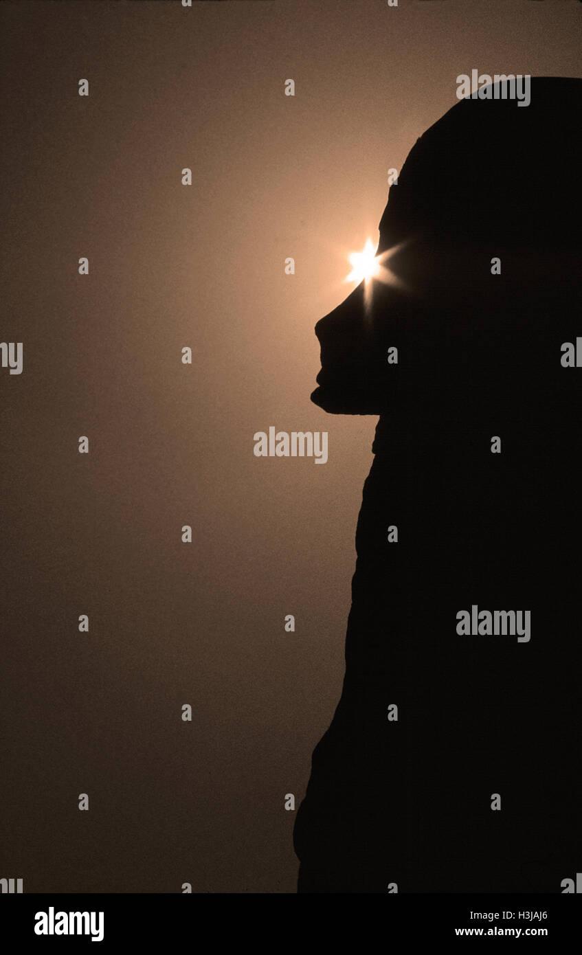 Sihouette aliena Immagini Stock