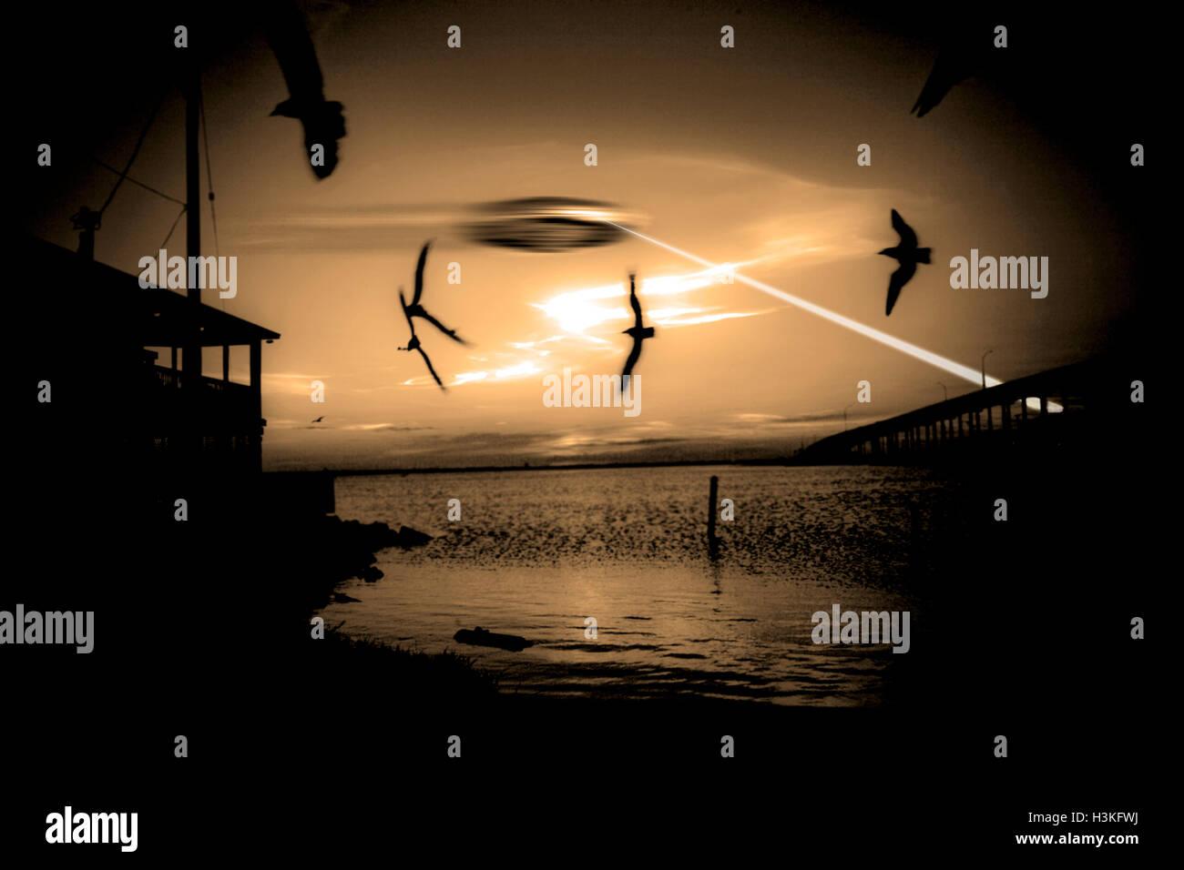 UFO spara verso il basso del fascio come uccelli scatter Immagini Stock