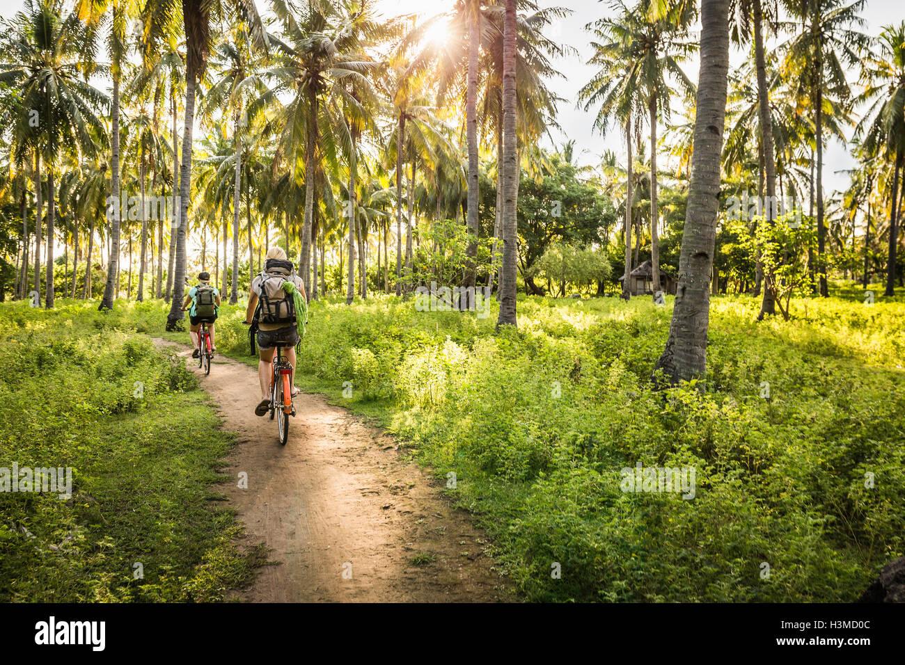 Vista posteriore di due giovani donne in bicicletta nel palm tree forest, Gili Meno, Lombok, Indonesia Immagini Stock