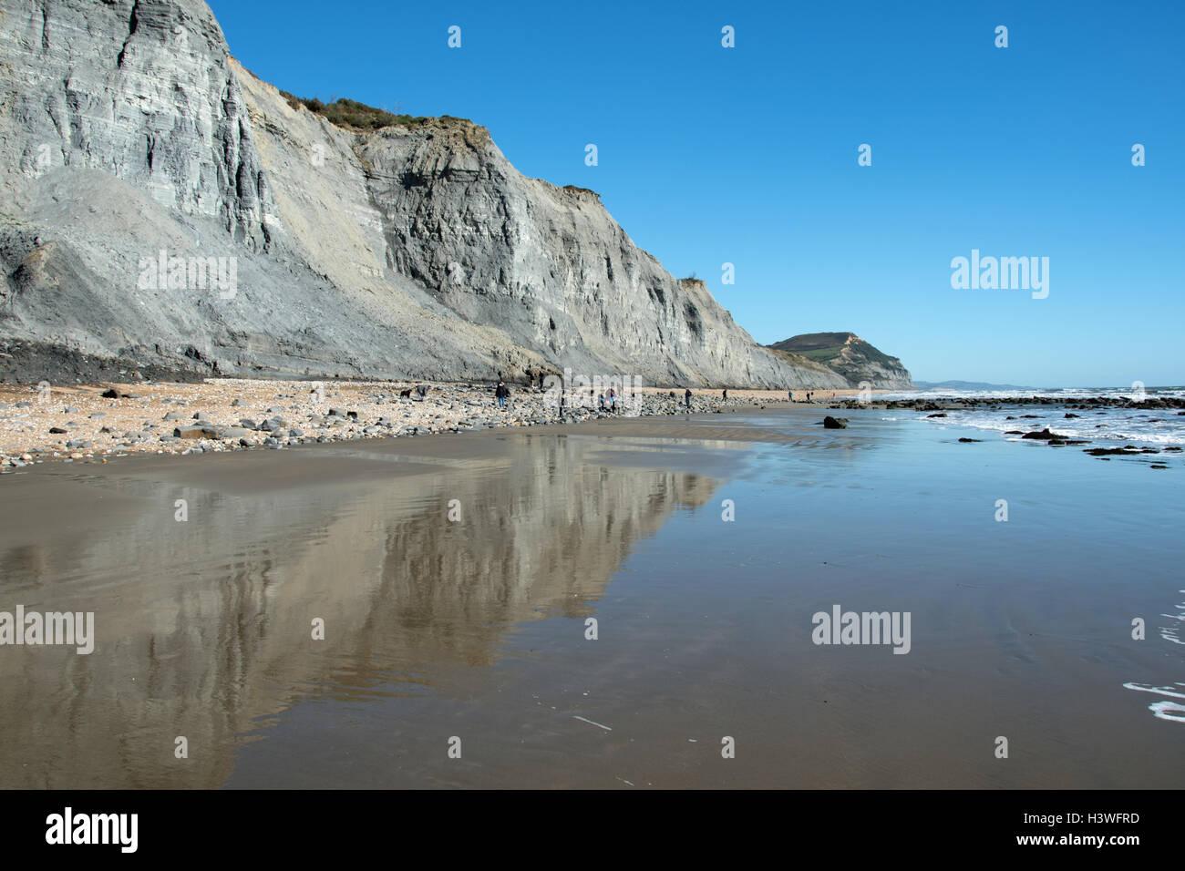 I cacciatori di fossili presso la famosa in tutto il mondo Jurassic Coast tra Charmouth e Golden Cap, Dorset. Immagini Stock