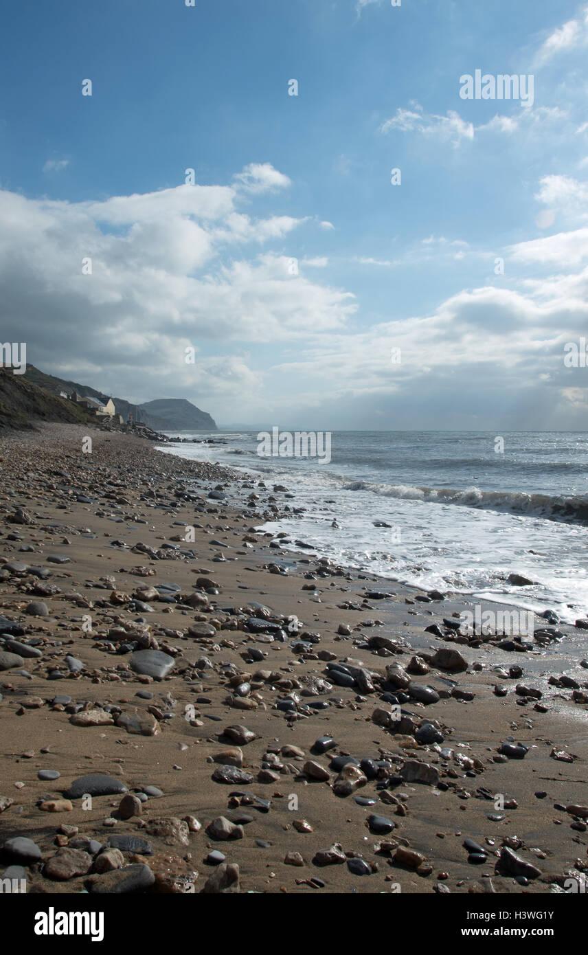 Il superbo, rinomato in tutto il mondo, arricchito di fossili di scogliere e il mare a Charmouth, Dorset, Inghilterra. Immagini Stock