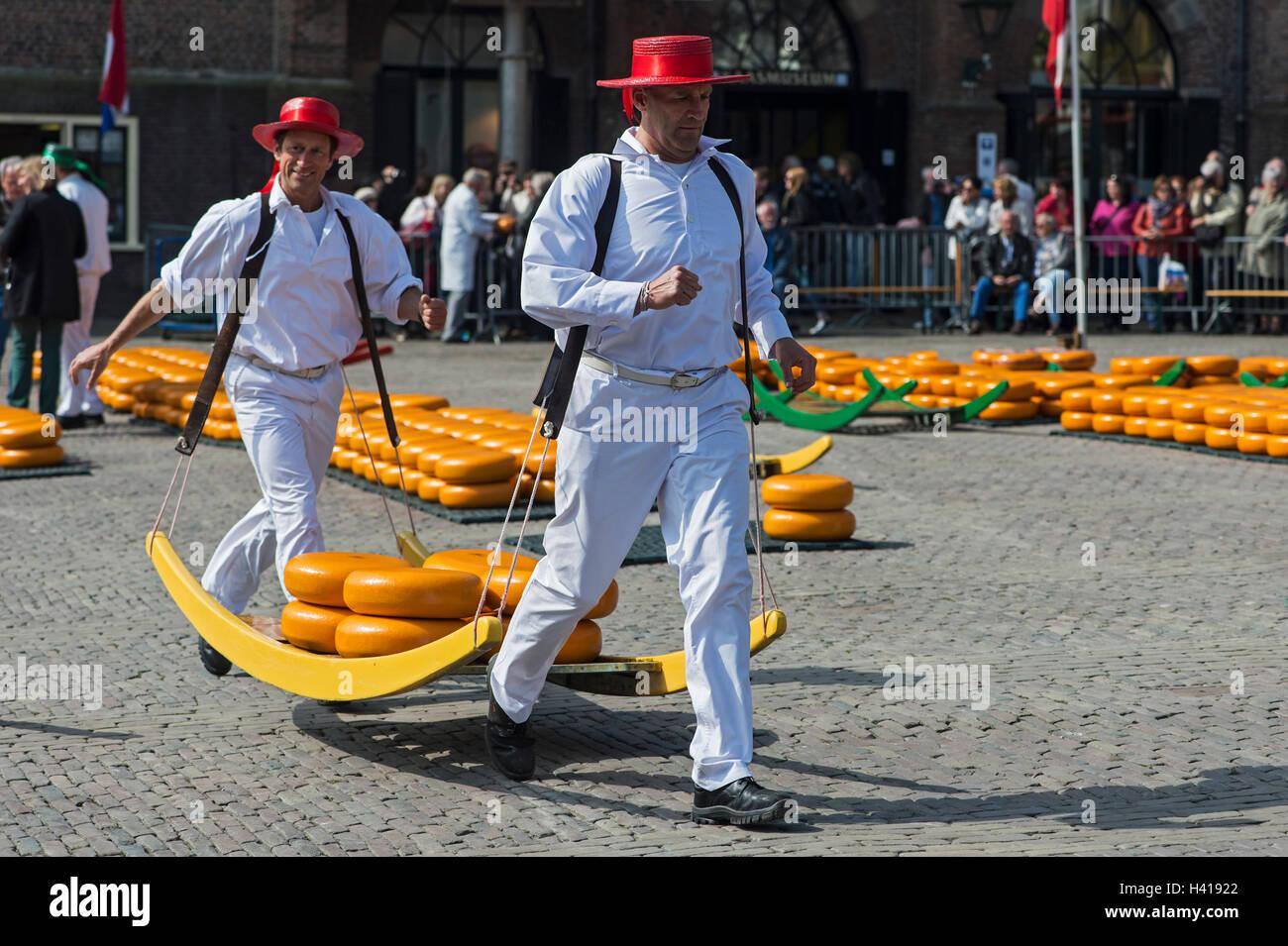 Vettori di formaggio al lavoro, riti e tradizioni di formaggio trading presentato al mercato del formaggio di Alkmaar, Immagini Stock
