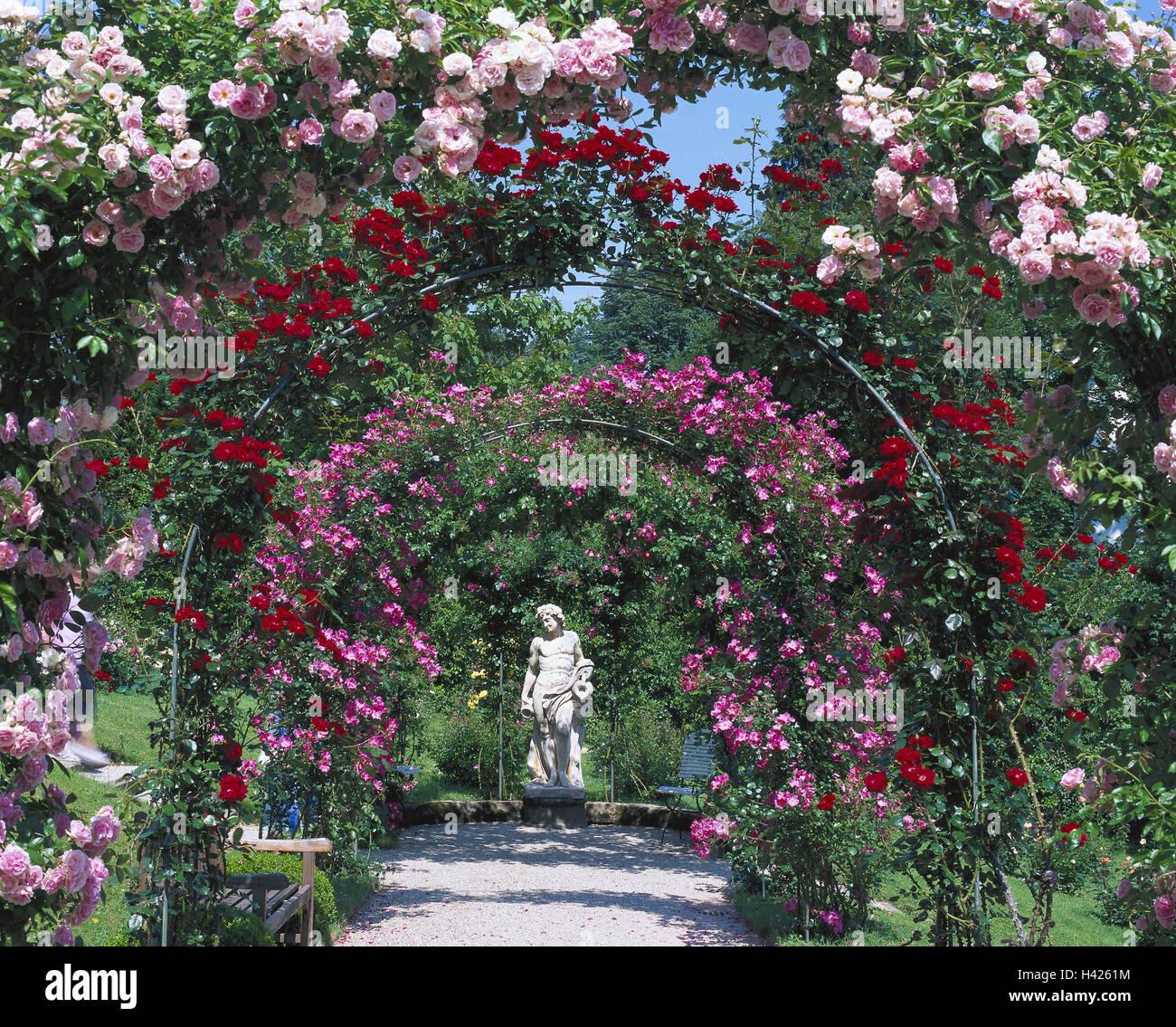Piante Di Rose Rampicanti giardino, curve di rose, statua, europa, germania, foresta