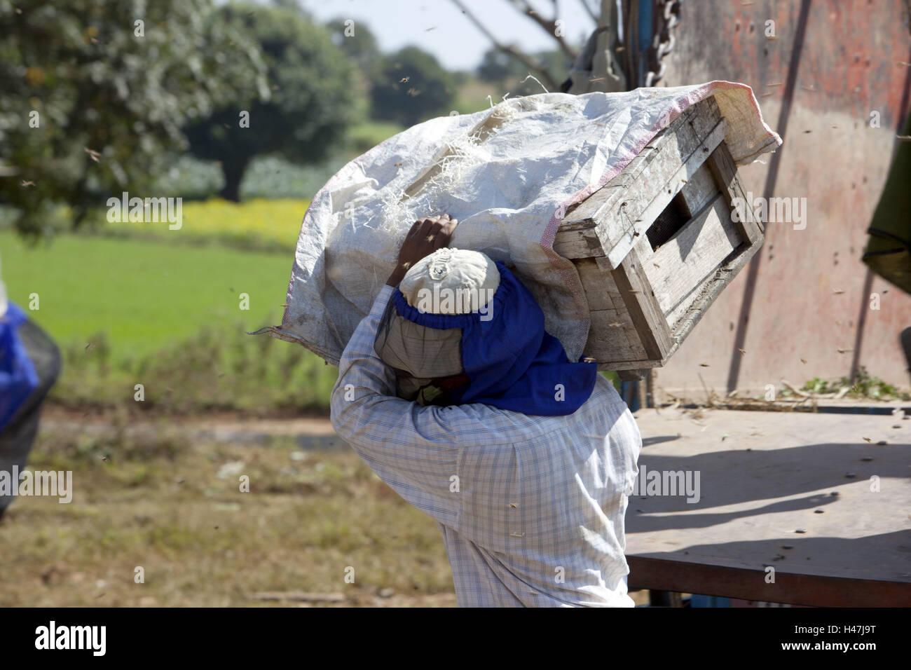 Myanmar, lavoratore off-load box con il viaggio di api, Immagini Stock