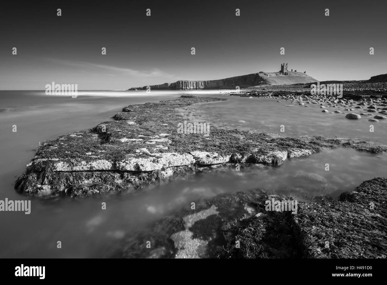 Il castello di Dunstanburgh dalle battute rocciose di Embleton Bay, Northumberland, Inghilterra. Molla (Marzo) 2014. Immagini Stock