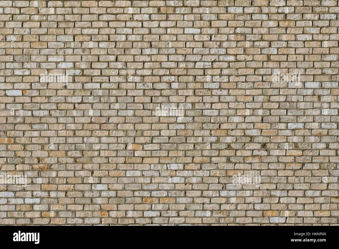 Luce colorata e parete di mattoni. Mattoni di colore bianco Immagini Stock