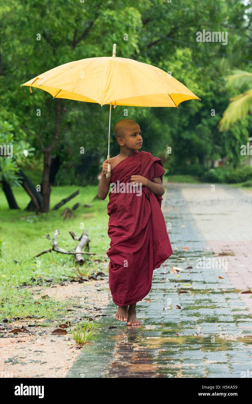 Giovane monaco buddista portando un ombrello sotto la pioggia, Dimbulagala monastero buddista vicino a Polonnaruwa, Immagini Stock