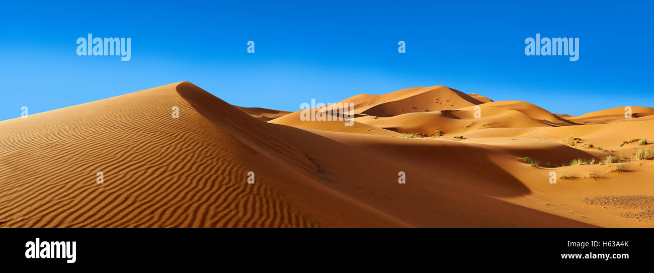 Panorama del Sahara dune di sabbia di Erg Chebbi, Merzouga, Marocco, Africa Foto Stock