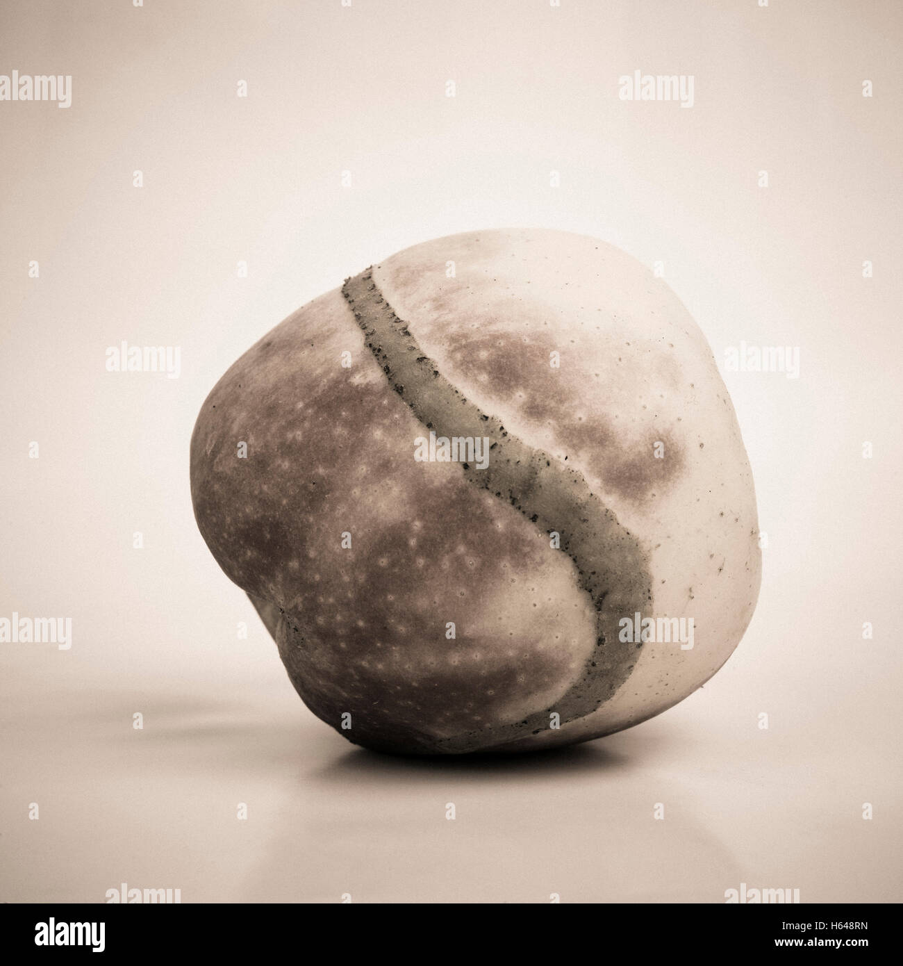 Apple danneggiato Immagini Stock